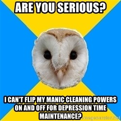 Bipolar Owl - are you serious? I can't flip my manic cleaning powers on and off for depression time MAINTENANCE?