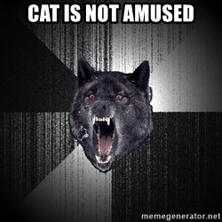 flniuydl - CAT IS NOT AMUSED