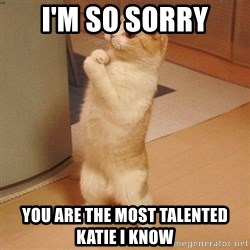 Sorry Cat - I'm so sorry You are the most talented katie i know
