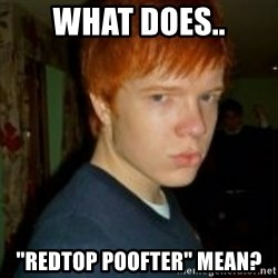 "Flame_haired_Poser - what does.. ""redtop poofter"" mean?"