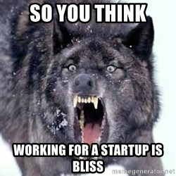 Angry Ass Wolf - So you think working for a startup is bliss