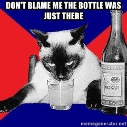 Alco-cat - DON'T BLAME ME THE BOTTLE WAS JUST THERE