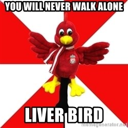 Liverpool Problems - YOU WILL NEVER WALK ALONE LIVER BIRD