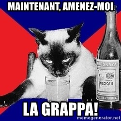 Alco-cat - MAINTENANT, AMENEZ-MOI LA GRAPPA!