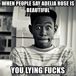 Tyler the Creator - when people say adelia rose is beautiful you lying fucks