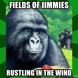 Gorilla Munch Gorilla - Fields of Jimmies rustling in the wind