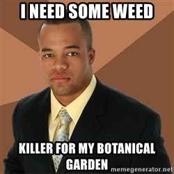 Successful Black Man - i need some weed  KILLER FOR MY BOTANICAL GARDEN