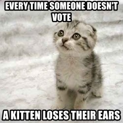 The Favre Kitten - Every time someone doesn't vote a kitten loses their ears