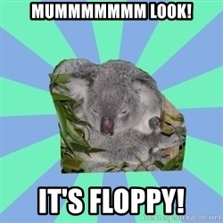 Clinically Depressed Koala - MUMMMMMMM LOOK! IT'S FLOPPY!