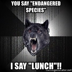 "Insanity Wolf - you say ""endangered species"" i say ""lunch""!!"