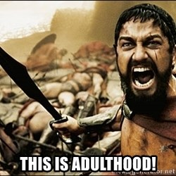 This Is Sparta Meme - This is adulthood!