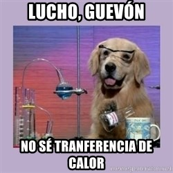 Dog Scientist - lucho, guevón no sé tranferencia de calor