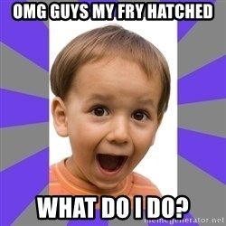 Excited - OMG GUYS MY FRY HATCHED WHAT DO I DO?