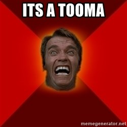 Angry Arnold - its a tooma