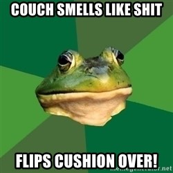 Foul Bachelor Frog - couch smells like shit flips cushion over!