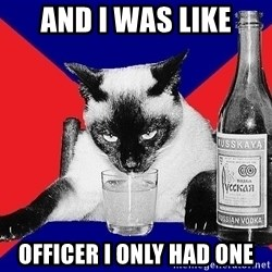 Alco-cat - AND I WAS LIKE OFFICER I ONLY HAD ONE