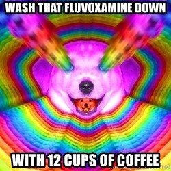 Final Advice Dog - wash that fluvoxamine down with 12 cups of coffee