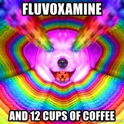Final Advice Dog - FLUVOXAMINE and 12 cups of coffee