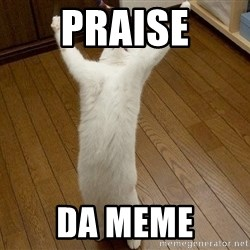 praise the lord cat - Praise Da meme