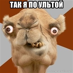 Crazy Camel lol - так я по ультой