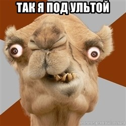 Crazy Camel lol - так я под ультой