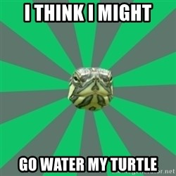 Poker turtle - I THINK I MIGHT GO WATER MY TURTLE