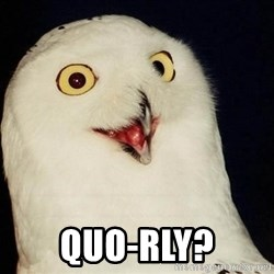 O Rly Owl -  QUO-RLY?