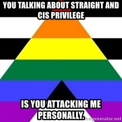 Bad Straight Ally - You Talking about straight and cis privilege is you attacking me personally.