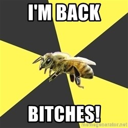 British High School Honeybee - I'm Back Bitches!