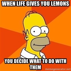 Homer Advice - WHEN LIFE GIVES YOU LEMONS YOU DECIDE WHAT TO DO WITH THEM