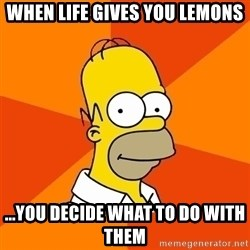 Homer Advice - WHEN LIFE GIVES YOU LEMONS ...YOU DECIDE WHAT TO DO WITH THEM