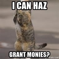 Begging Cat - I can haz grant monies?