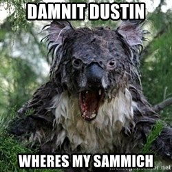Wet Koala - Damnit dustin wheres my sammich