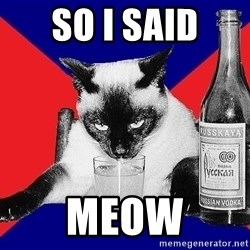 Alco-cat - SO I SAID MEOW