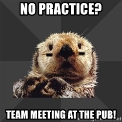 Roller Derby Otter - NO PRACTICE? TEAM MEETING AT THE PUB!
