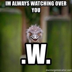 Rapist Ostrich - im always watching over you .w.