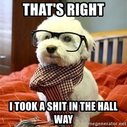 hipster dog - THAT'S RIGHT I TOOK A SHIT IN THE HALL WAY