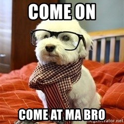hipster dog - COME ON COME AT MA BRO