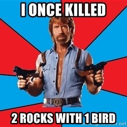 Chuck Norris  - I once killed 2 rocks with 1 bird