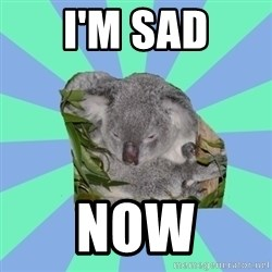 Clinically Depressed Koala - I'M SAD NOW