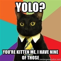 Business Cat - yolo? you're kitten me, i have nine of those