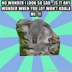 Clinically Depressed Koala - no wonder i look so sad ...is it any wonder when you lot won't koala me  !!!