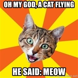 Bad Advice Cat - oh my god, a cat flying he said: meow