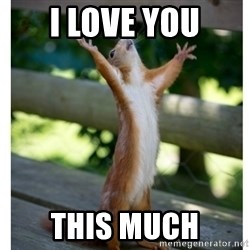Thanking Squirrel - i love you this much