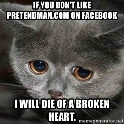 Sad Cute Cat - If you don't like pretendman.com on facebook I will die of a broken heart.