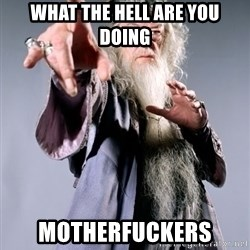 Dumbledore - what the hell are you doing Motherfuckers