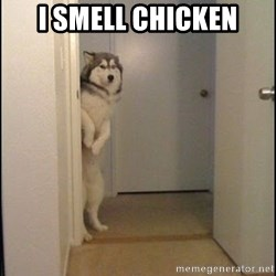 Oye Lucho - I SMELL CHICKEN