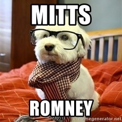 hipster dog - Mitts Romney