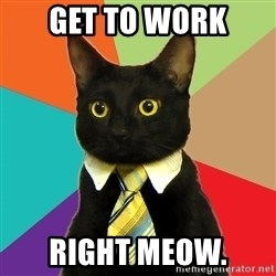 BusinessCat - get to work right meow.