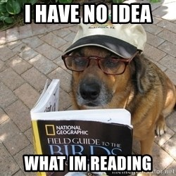 Dog Studying - i have no idea  what im reading